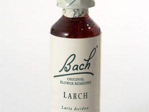 Larch Fiducia Fiori di Bach