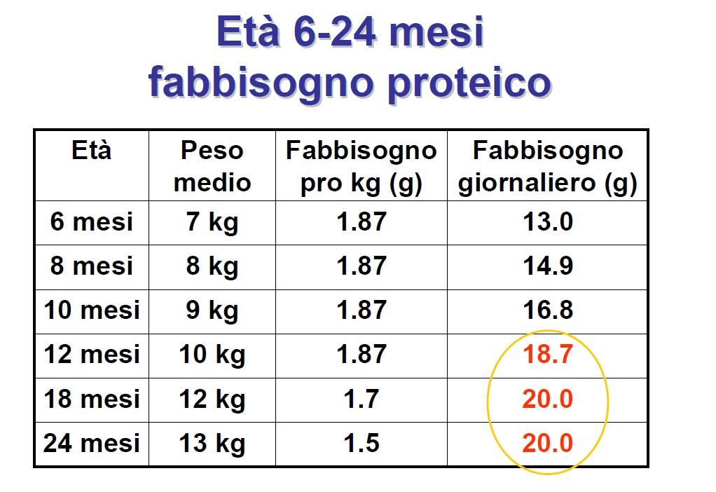 Svezzamento proteine