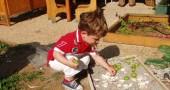 Le scuole dell'infanzia a Reggio Emilia